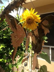Sunflower and Zinnias